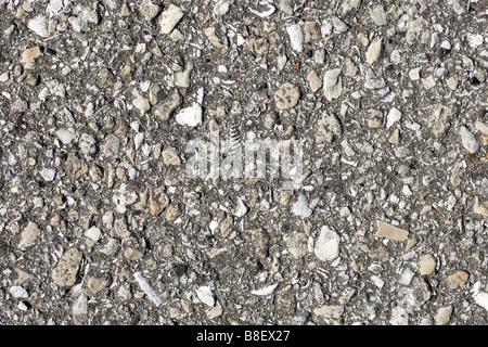 Fond d'asphalte close up avec texture Banque D'Images