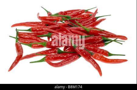 Piments rouges frais isolé sur fond blanc