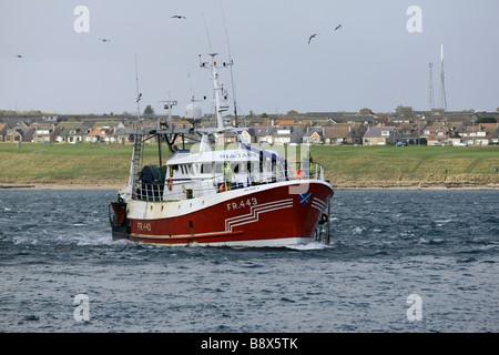 Chalutier rouge entre dans le port de Peterhead, en Écosse, au Royaume-Uni, le plus grand port du corégone de décharger Banque D'Images