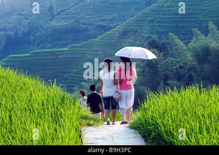 Chine, Province du Guangxi Longsheng, Dragon's backbone Rice Terraces près de Guilin. Les touristes à pied à travers les rizières. Banque D'Images
