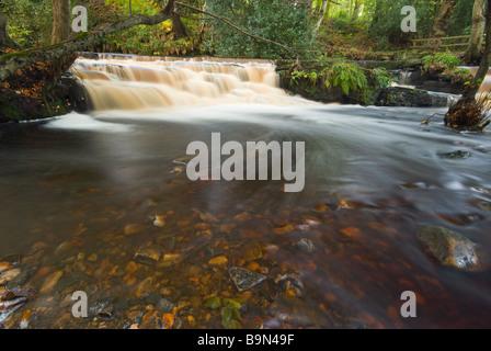 L'eau coule sur le seuil du moulin à papier Le barrage sur le fleuve, dans la vallée de Rivelin Rivelin, Sheffield. Banque D'Images
