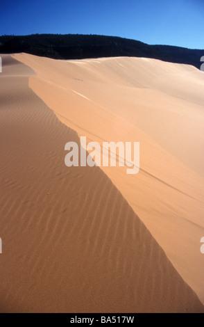 Dune de sable abrupte pente désert état du paysage American park Coral Pink Sand Dunes Utah USA Banque D'Images