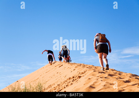 Big Red - escalade une dune de sable dans le Simpson Desert National Park, près de Birdsville, Queensland, Australie Banque D'Images