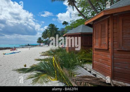 """Cabines de plage en cours d'élaboration, couverts de feuilles de cocotier en Worthing Beach, de la Barbade, """"West Banque D'Images"""