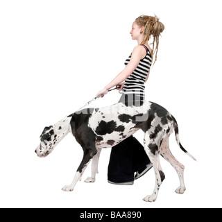 Jeune fille promener son chien dogue allemand arlequin 4 ans devant un fond blanc Banque D'Images