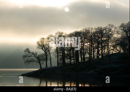 Des arbres sur le bord du lac silhouetté contre sun briser une brume du matin sur Derwent water dans le Lake District Banque D'Images