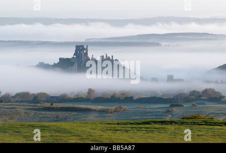 Château de Corfe dans la brume à l'aube d'avril, pris de haut dans les collines de Purbeck Banque D'Images