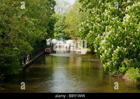 Serrure sur la Tamise à Reading dans le Berkshire Uk