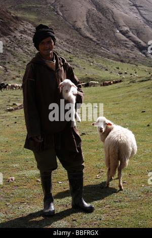 Afrique, Afrique du Nord, Maroc, Haut Atlas, champs en terrasses, Tizi n Tichka, Berger, brebis et son agneau Banque D'Images