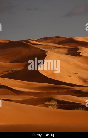Afrique, Afrique du Nord, Maroc, Sahara, Merzouga, Erg Chebbi, Sundown