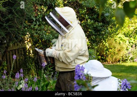 À l'aide d'un apiculteur fumeur galvanisé ou firebox Banque D'Images