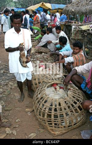 L'homme indien de la tribu Dhuruba dans le marché du poulet, Baipari Guda, Orissa Banque D'Images