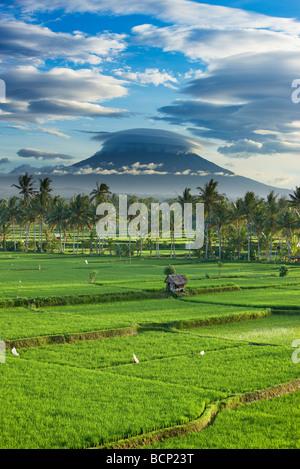 Un ciel dramatique au-dessus de la crête volcanique de Gunung Agung et les champs de riz, près de Ubud, Bali, Indonésie Banque D'Images
