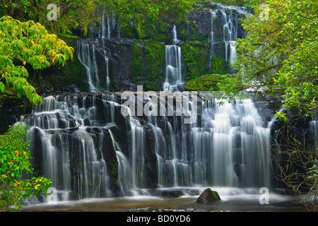 Purakaunui Falls ile sud Nouvelle Zelande Catlins