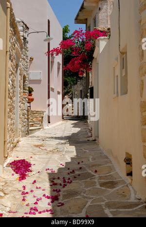 Une belle vue sur la ruelle étroite au coeur du petit village historique de Halki. Halki, Tragaea, l'île de Naxos, Banque D'Images