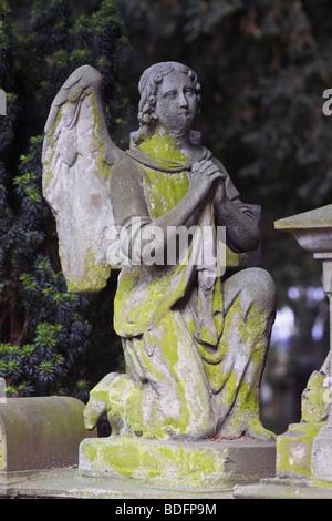 Prier, à genoux sur un tombeau de pierre angel, ancien cimetière, Bonn, Berlin, Germany, Europe Banque D'Images
