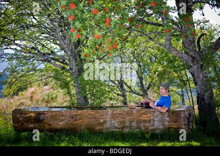Une pause fraîcheur dans le Livradois - Forez réserve naturelle (France). Pause fraîcheur dans le Parc naturel régional Livradois - Forez.