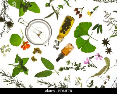 Plantes médicinales et comprimés Banque D'Images