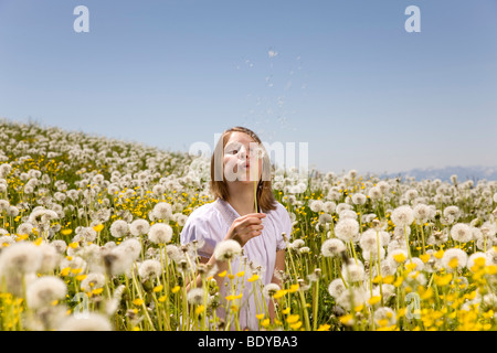 Girl in meadow blowing dandelion seeds Banque D'Images