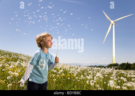 Boy blowing dandelion à wind turbine Banque D'Images