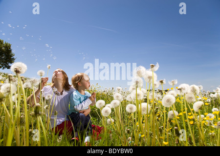 Girl, boy blowing dandelions Banque D'Images