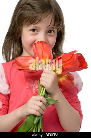 dd0d21a997e72 Petit enfant qui sent les tulipes sur la fleur lit dans un beau jour de  printemps  Peu de belle fille avec bouquet de tulipes dans mains isolated  on white ...