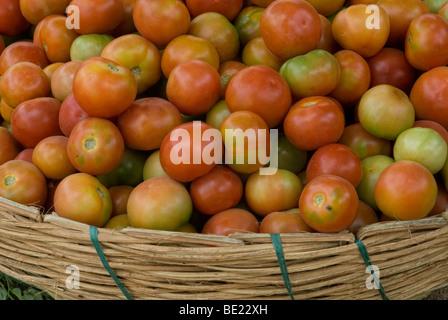 Panier de tomates Banque D'Images