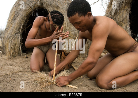 Bushman Naro (San) les hommes faire un feu avec des bâtons, commiphera central kalahari, Botswana Banque D'Images