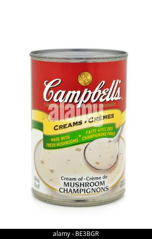 Tin/Pouvez de crème de champignons. Banque D'Images