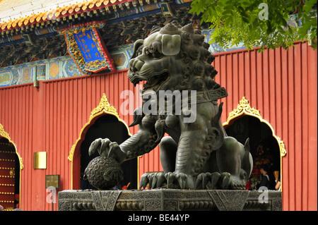 Un lion mâle bronze statue au Yonghe Gong Lama Temple gate, Beijing CN Banque D'Images