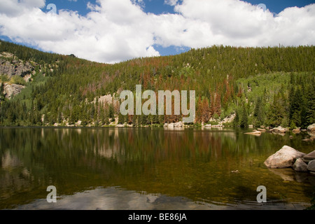 Lac de l'ours, Rocky Mountain National Park, Colorado, USA Banque D'Images