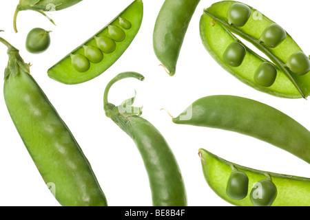 Les gousses de pois vert isolé sur fond blanc Banque D'Images