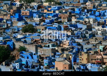La ville bleue, Jodhpur, Inde, Asie du Sud