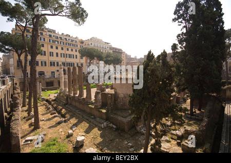Largo di Torre Argentina, Rome, Latium, Italie Banque D'Images