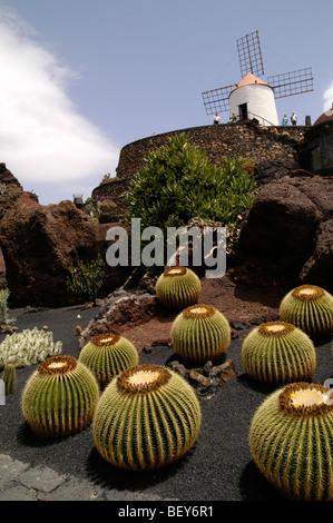 Jardin de los cactus, Lanzarote, îles canaries, espagne Banque D'Images