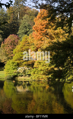 L'automne arbres se reflétant dans l'eau encore, 2009 Banque D'Images