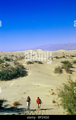 Une randonnée parmi les dunes de sable est un doit faire l'activité pour les visiteurs de la Death Valley National Banque D'Images