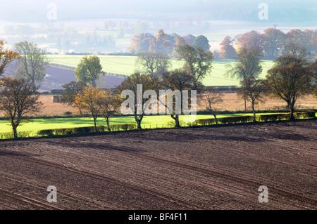 Une vue aérienne d'un champ labouré. Banque D'Images