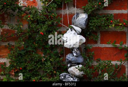 Adder pierre au mur d'une maison et d'Argousier