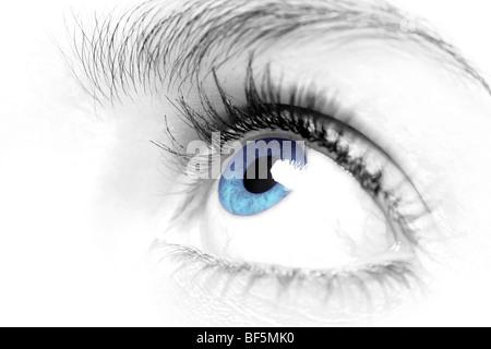 Les femelles blue eye close up Banque D'Images