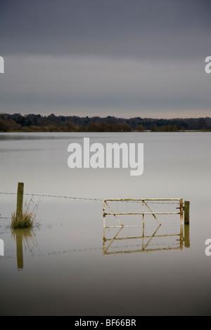 L'escrime et le porte dans un champ inondé, Littlehampton, West Sussex, Angleterre. Banque D'Images