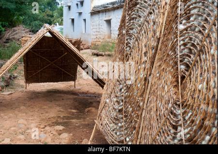Les cocons de vers à soie dans un cadre en bambou circulaires dans la production de la soie dans un village de l'Inde Banque D'Images