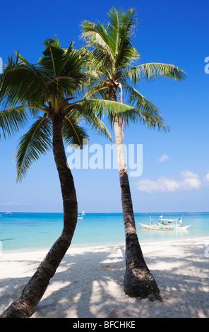 Deux palmiers sur la plage de Boracay, Philippines; Visayas. Banque D'Images