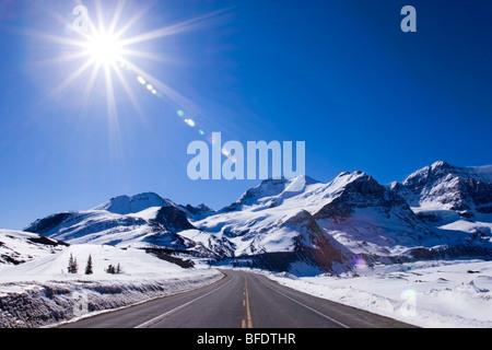 Promenade des Glaciers menant à Columbia Icefield dans les Rocheuses entre Banff et Jasper National Park en Alberta Banque D'Images