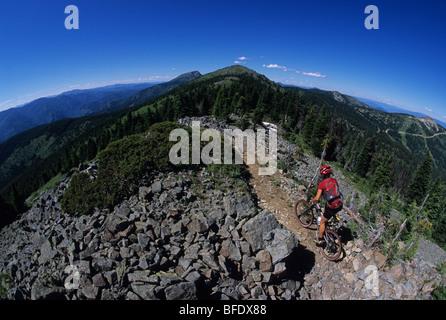Une femme sur son vtt appréciant les sept sentiers du sommet à Rossland, Colombie-Britannique, Canada Banque D'Images