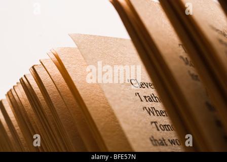 Close up de pages de livre Banque D'Images