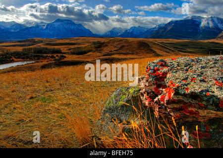 La vue sur le parc national des Lacs-Waterton du stylo de bison, Alberta, Canada Banque D'Images