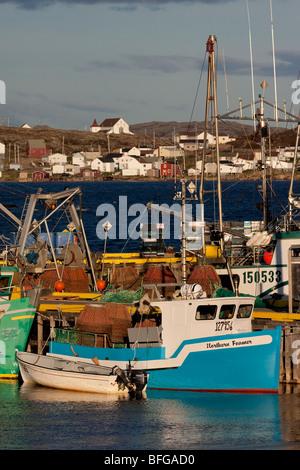 Les bateaux de pêche du crabe, Joe Batt's Arm, l'île de Fogo, Newfoundlad et Labrador, Canada Banque D'Images