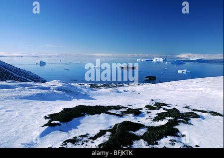 Expédition en Antarctique, le MV Ushuaia ancrées à Brown Bluff en Antarctique Banque D'Images
