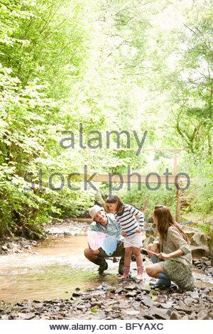 Jouer avec la famille des moustiquaires en stream Banque D'Images